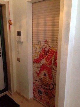 Рольставни на двери в квартире